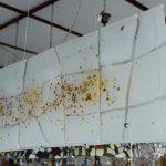 Frame - Collezione con vetri soffiati